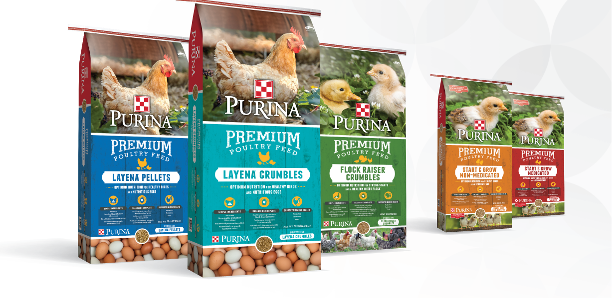 Layena Poultry Feed